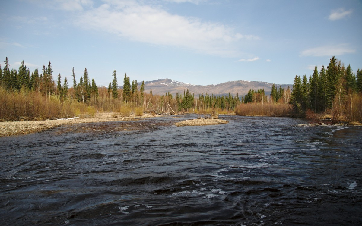 Looking up the North Fork of the Chena River