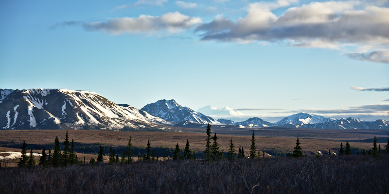 Denali from the Park Road