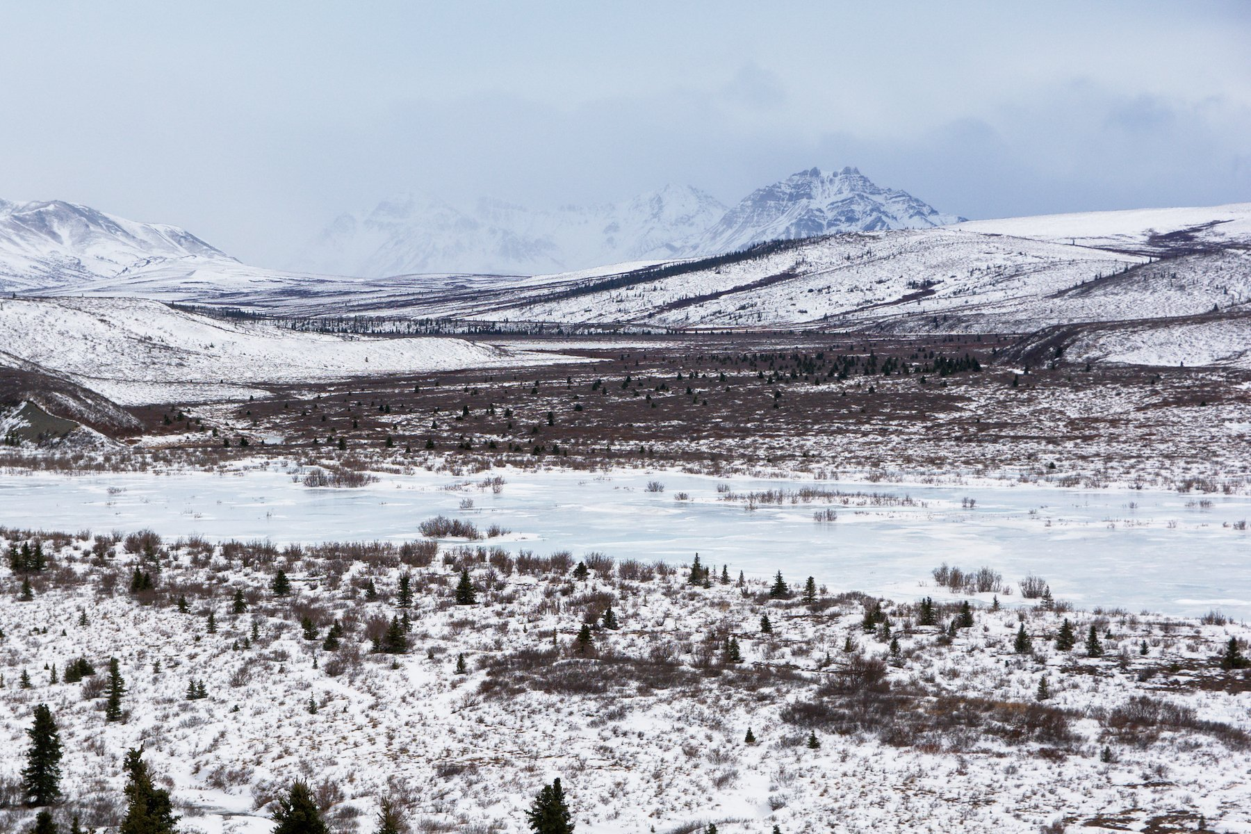 Looking at Double Mountain over the frozen Savage River in Denali National Park.