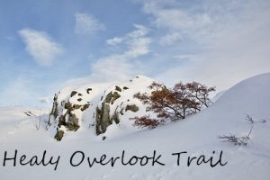 Photos of the Healy Overlook Trail, Meadow View Trail, and the Roadside Hiking Trail in Denali National Park in winter.