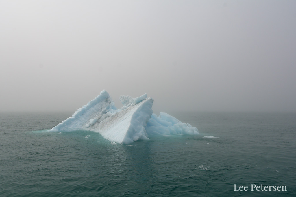 Iceberg in Prince William Sound
