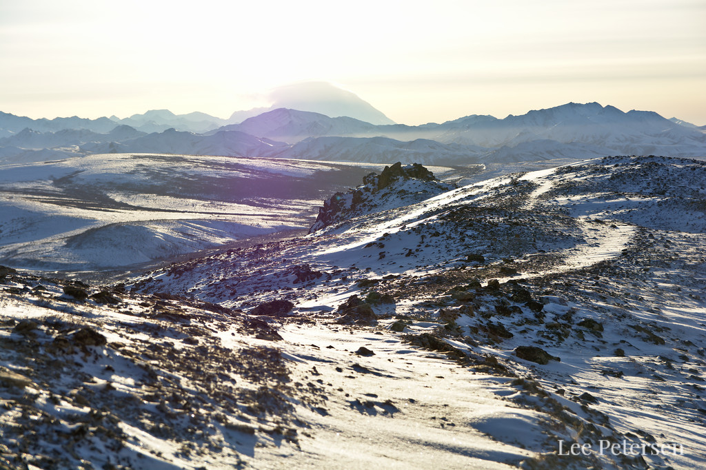 Winter view from the Alpine Trail in Denali National Park.