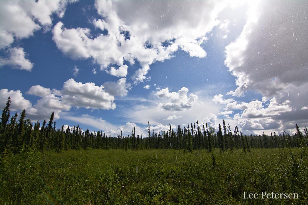 Mid-day sunny downpour in Fairbanks, Alaska