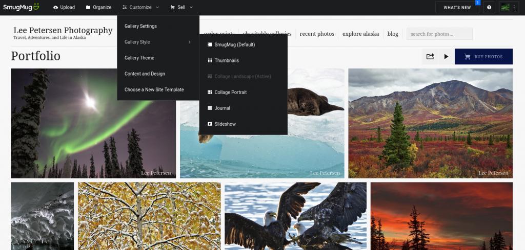 Display of some of the top toolbar options in SmugMug.